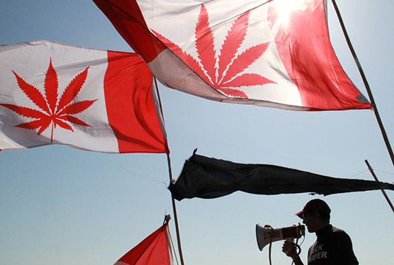 A man stands speaking into a megaphone below two red cannabis Canadaian flag flapping in the bright sun.